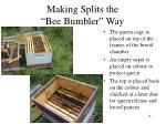 making splits the bee bumbler way8