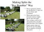 making splits the bee bumbler way9