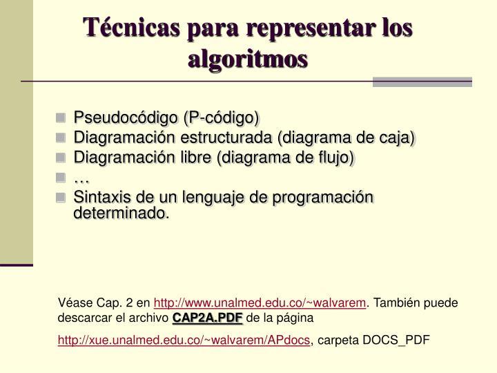 Técnicas para representar los algoritmos