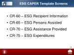 esg caper template screens