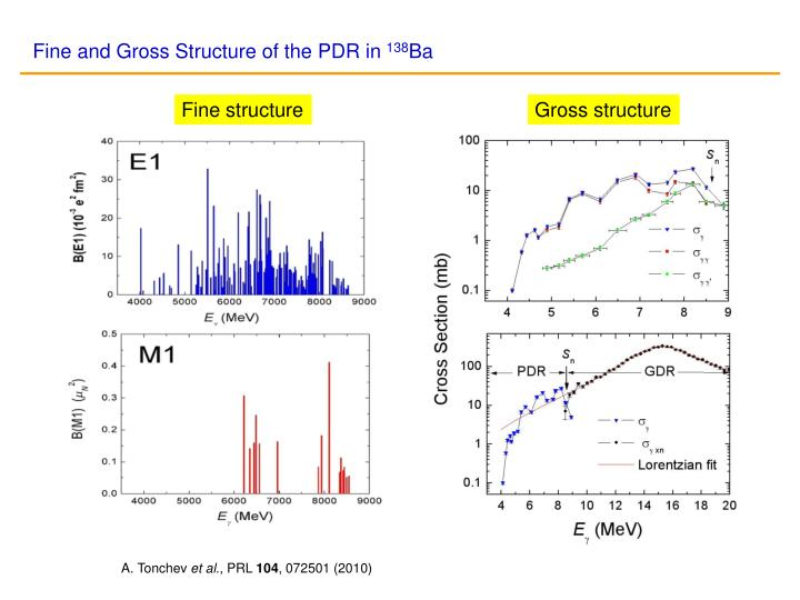 Fine and Gross Structure of the PDR in