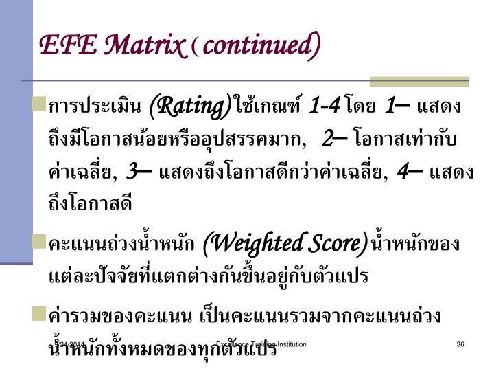 EFE Matrix