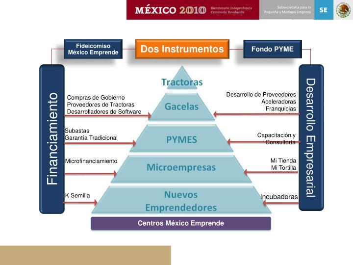 Fideicomiso México Emprende