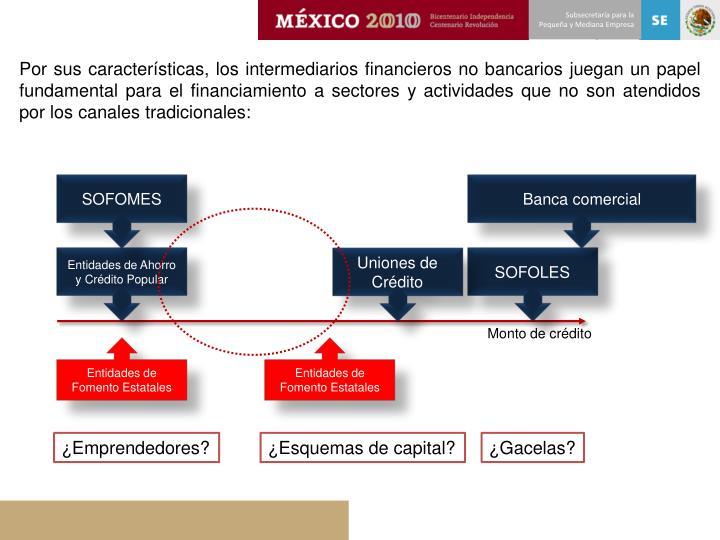 Por sus características, los intermediarios financieros no bancarios juegan un papel fundamental para el financiamiento a sectores y actividades que no son atendidos por los canales tradicionales: