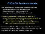 qso agn evolution models1