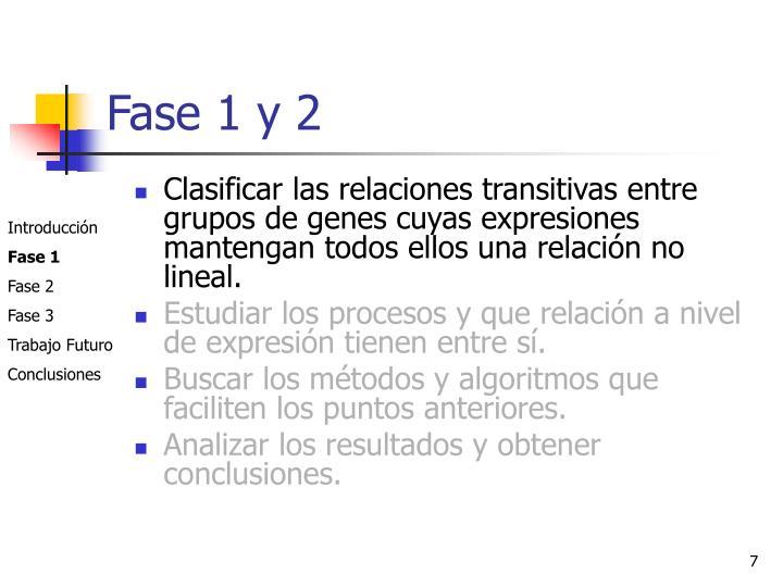 Fase 1 y 2