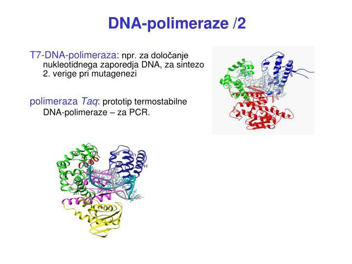 DNA-p