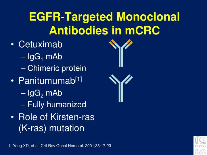 EGFR-Targeted Monoclonal Antibodies in mCRC