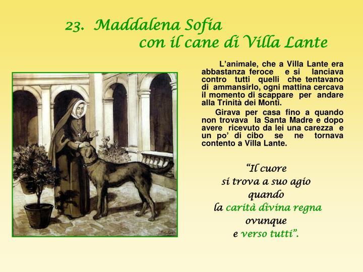 23.  Maddalena Sofia