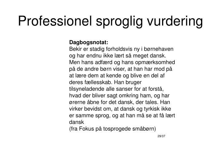 Professionel sproglig vurdering