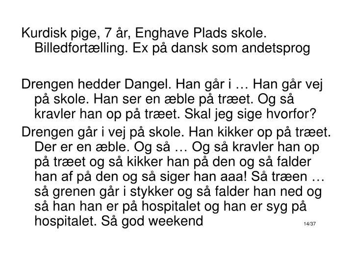 Kurdisk pige, 7 år, Enghave Plads skole. Billedfortælling. Ex på dansk som andetsprog
