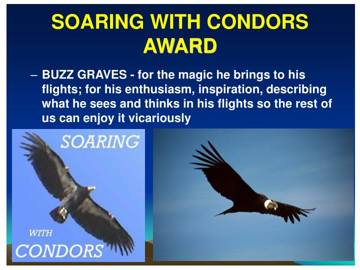 SOARING WITH CONDORS
