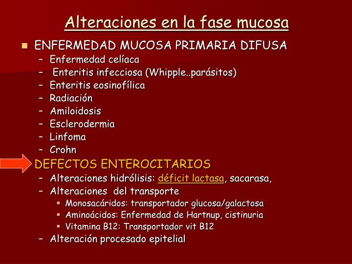 Alteraciones en la fase mucosa