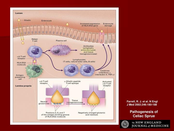 Farrell, R. J. et al. N Engl J Med 2002;346:180-188