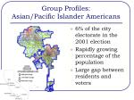 group profiles asian pacific islander americans1