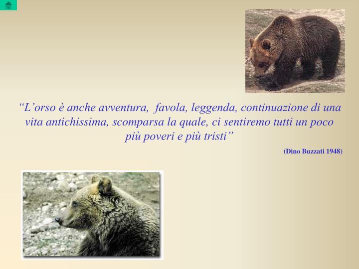 """""""L'orso è anche avventura,  favola, leggenda, continuazione di una vita antichissima, scomparsa la quale, ci sentiremo tutti un poco più poveri e più tristi"""""""