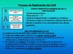proceso de replicaci n del adn