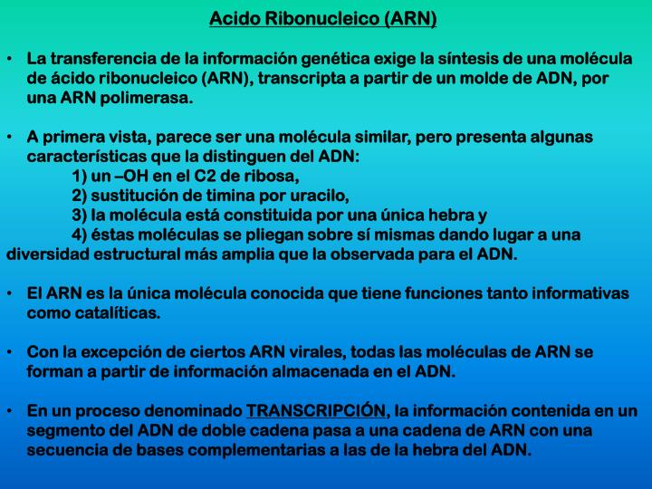 Acido Ribonucleico (ARN)