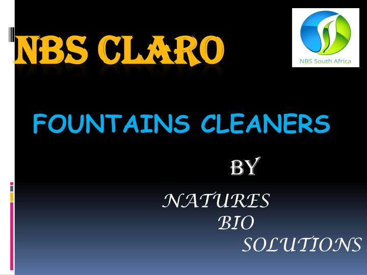 fountains cleaners