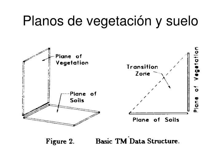 Planos de vegetación y suelo