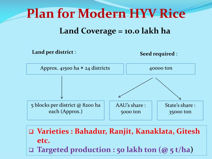 Plan for Modern HYV Rice