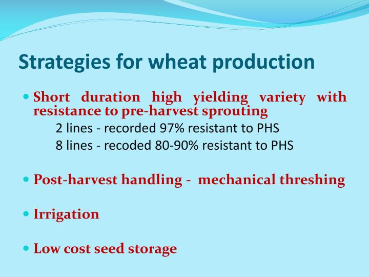 Strategies for wheat production
