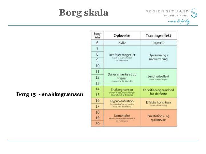 Borg 15  - snakkegrænsen