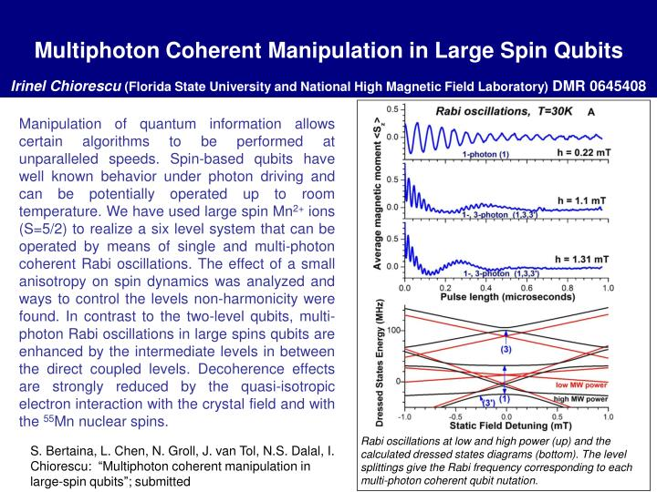 Multiphoton Coherent Manipulation in Large Spin Qubits