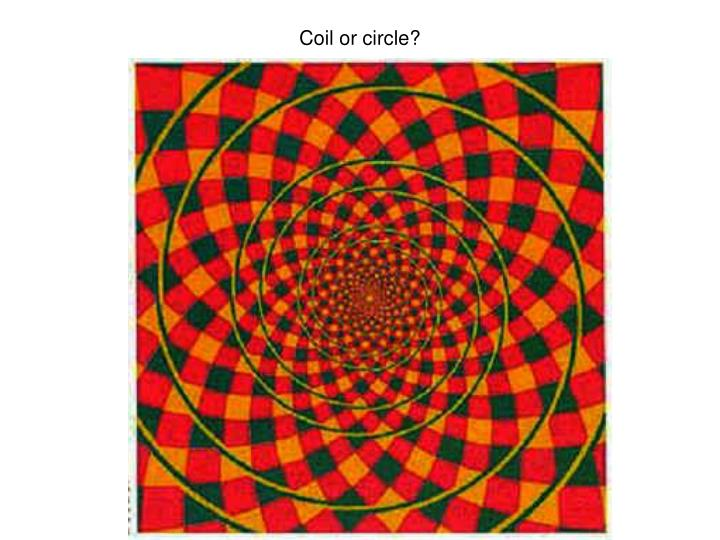 Coil or circle?