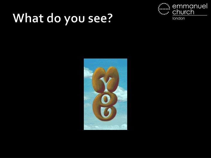 What do you see2