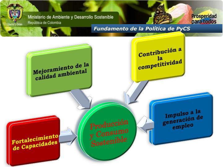 Fundamento de la Política de PyCS