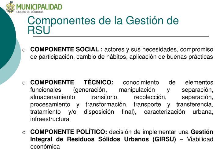Componentes de la Gestión de RSU
