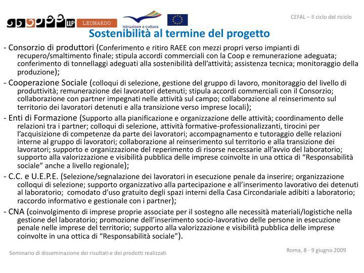 Sostenibilità al termine del progetto