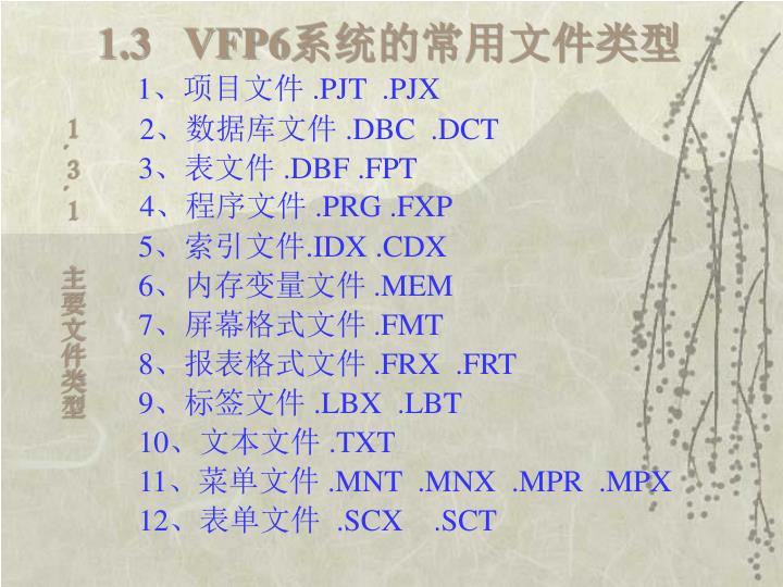 1.3   VFP6
