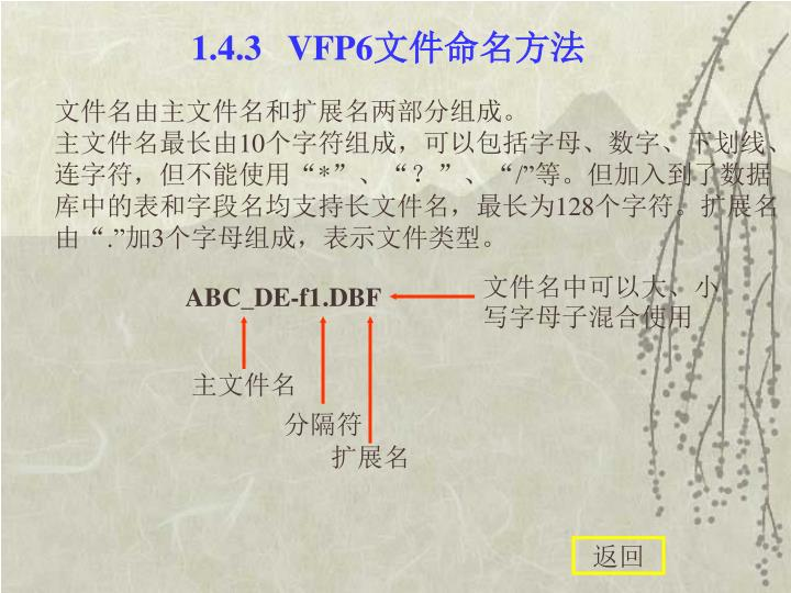 1.4.3   VFP6