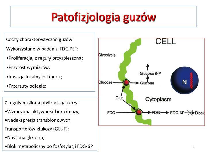 Patofizjologia guzów