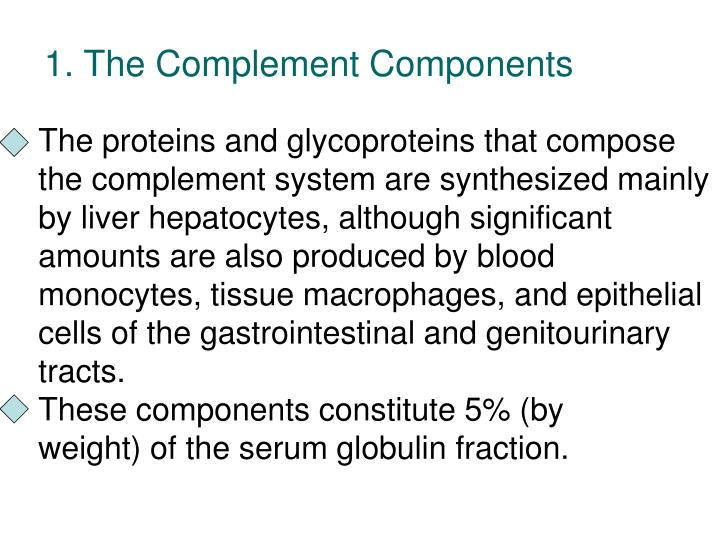 1. The Complement Components