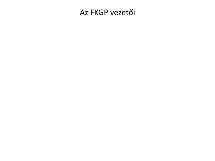 Az FKGP vezeti