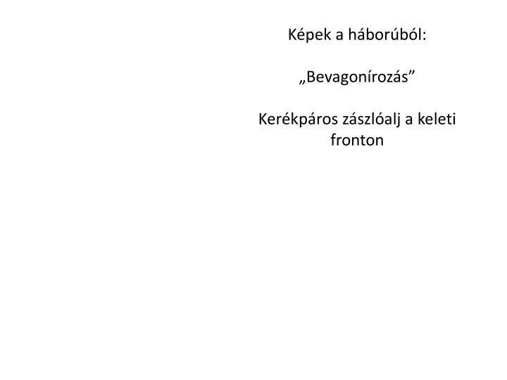 Kpek a hborbl: