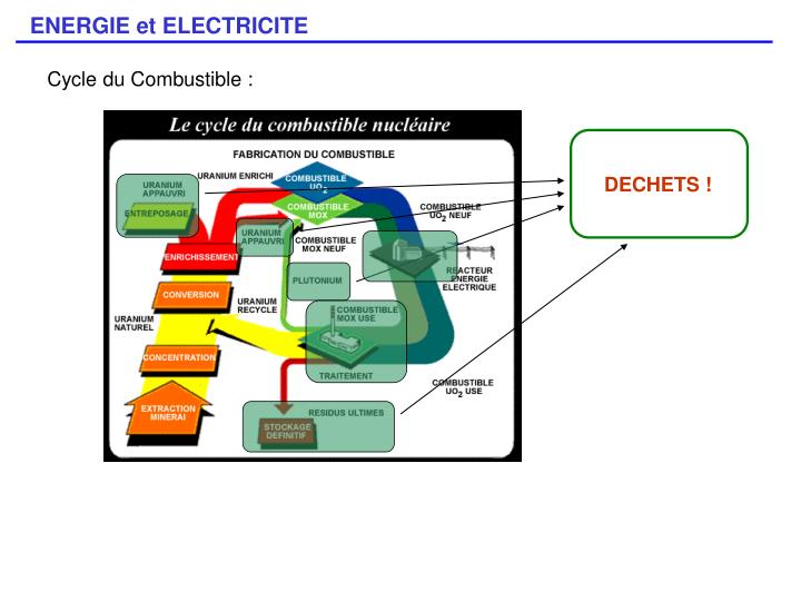 Cycle du Combustible :