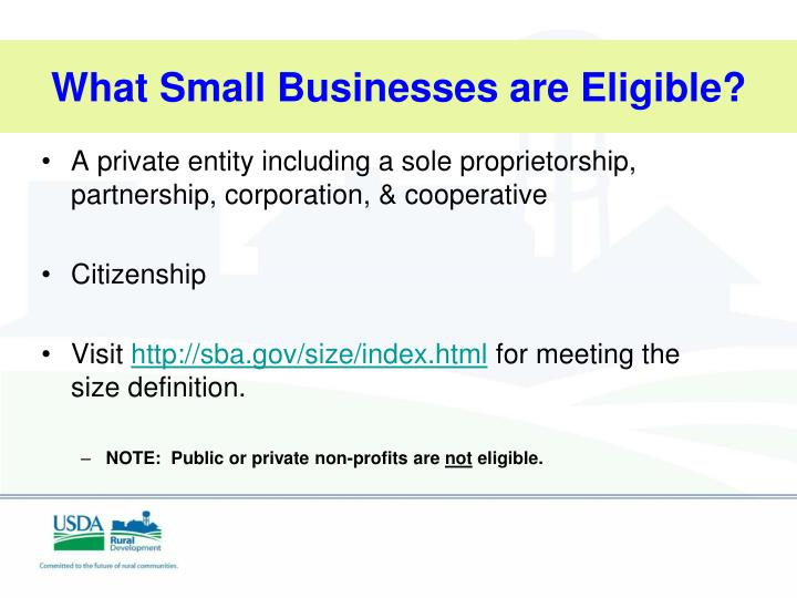 What Small Businesses are Eligible?