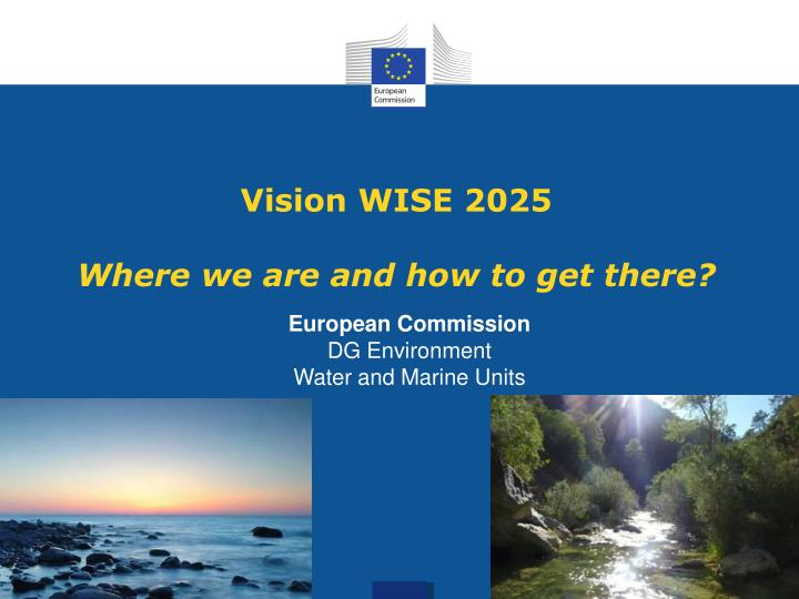 Vision wise 2025 where we are and how to get there