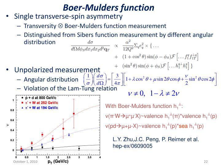 Boer-Mulders function