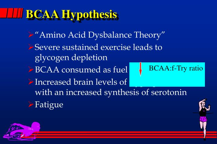 BCAA Hypothesis