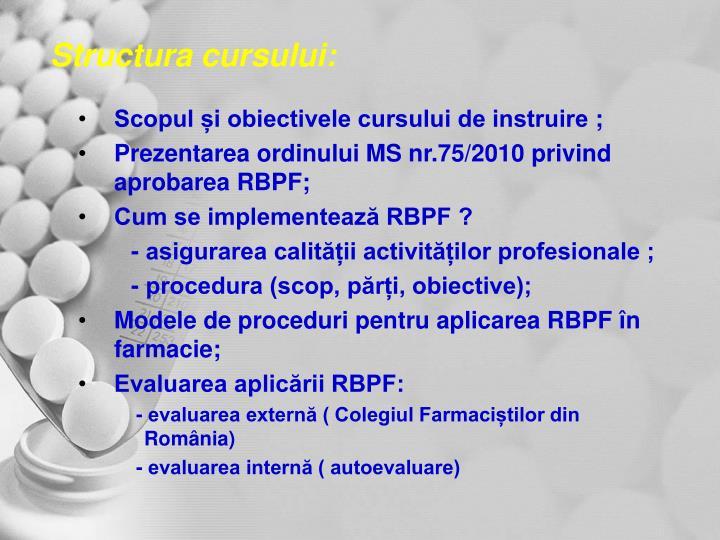 Structura cursului: