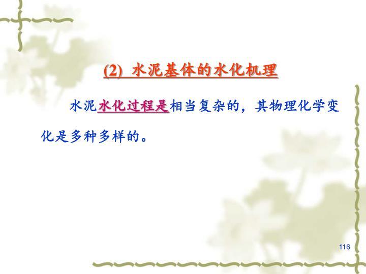 (2)  水泥基体的水化机理
