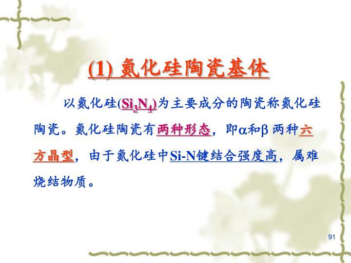 (1) 氮化硅陶瓷基体