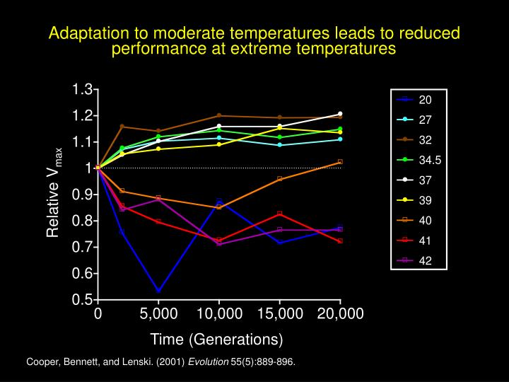 Adaptation to moderate temperatures leads to reduced performance at extreme temperatures