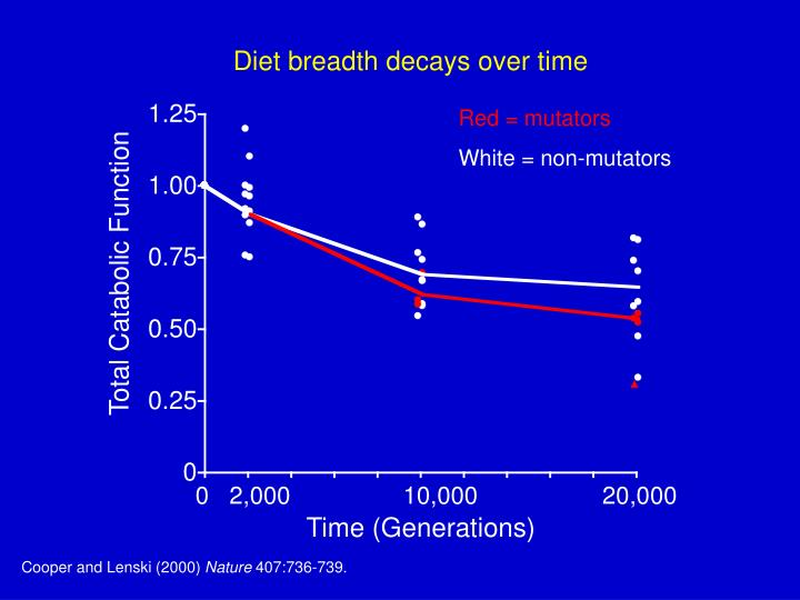 Diet breadth decays over time