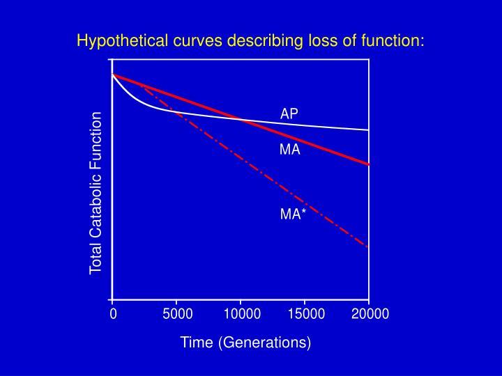 Hypothetical curves describing loss of function: